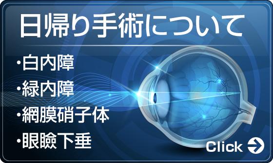 日帰り手術について・白内障・緑内障・網膜硝子体・眼瞼下垂